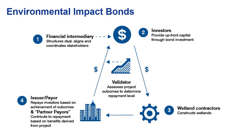 Structure of Louisiana Environmental Impact Bond