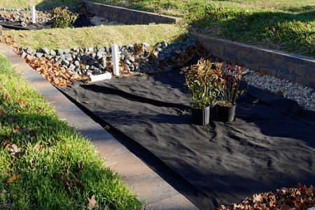 Rain gardens built by District Stormwater
